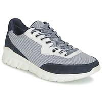 鞋子 男士 球鞋基本款 Paul & Joe REPPER 海藍色