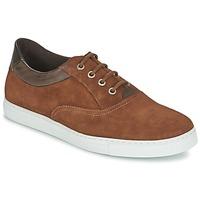 鞋子 男士 球鞋基本款 Casual Attitude DIMO 棕色