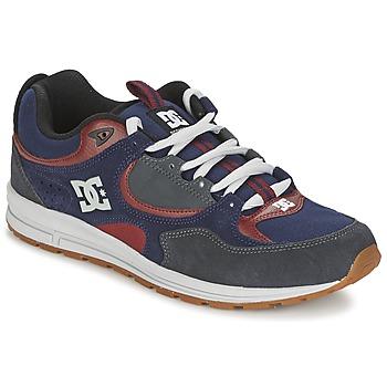 鞋子 男士 板鞋 DC Shoes KALIS LITE 海蓝色 / 灰色