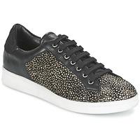 鞋子 女士 球鞋基本款 Maruti NOVA 黑色 / 白色