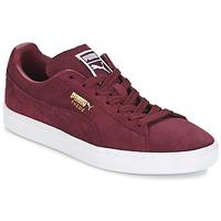 鞋子 男士 球鞋基本款 Puma 彪马 SUEDE CLASSIC + 波尔多红