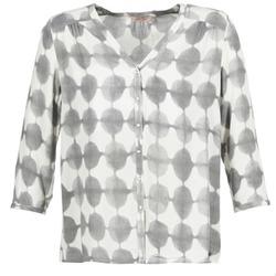 衣服 女士 衬衣/长袖衬衫 DDP GOSA 灰褐色 / 浅米色