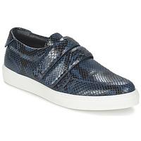 鞋子 女士 球鞋基本款 Sonia Rykiel 索尼亚·里基尔 SPENDI 蓝色 / 黑色