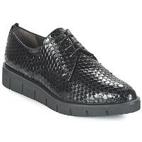 鞋子 女士 德比 Perlato MEQUINI 黑色