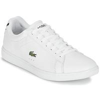 鞋子 女士 球鞋基本款 Lacoste CARNABY EVO BL 1 白色
