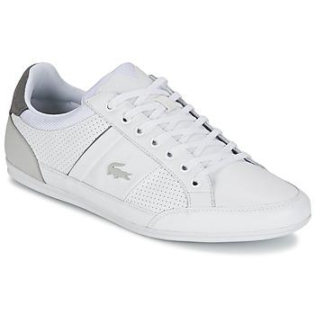 鞋子 男士 球鞋基本款 Lacoste CHAYMON 316 1 白色 / 灰色