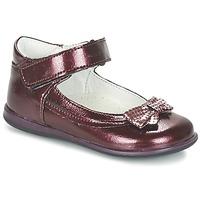 鞋子 女孩 平底鞋 Citrouille et Compagnie FRIZZY 波尔多红
