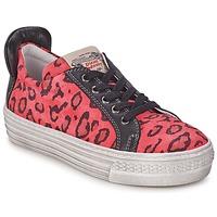 鞋子 女孩 球鞋基本款 Diesel 迪赛尔 JAKID 玫瑰色 / Leopard