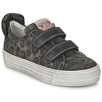 鞋子 儿童 球鞋基本款 Diesel 迪赛尔 JERMAN 灰色 / Leopard