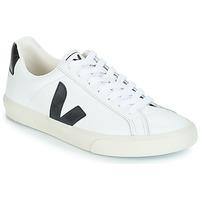 鞋子 球鞋基本款 Veja ESPLAR LOW LOGO 白色 / 黑色