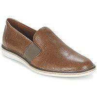 鞋子 男士 平底鞋 LLOYD ALISTER 棕色