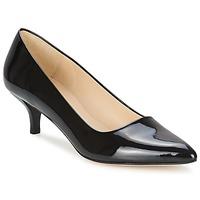 鞋子 女士 高跟鞋 Paco Gil UTIEL 黑色