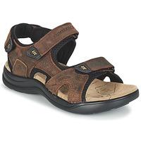 鞋子 男士 运动凉鞋 Lumberjack EARTH 棕色