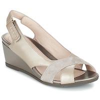 鞋子 女士 凉鞋 Stonefly 斯通富莱 SWEET 灰褐色