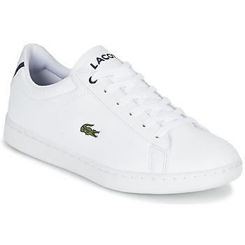 鞋子 儿童 球鞋基本款 Lacoste CARNABY EVO BL 1 白色
