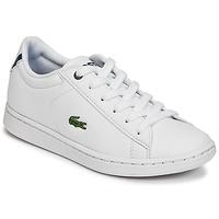 鞋子 兒童 球鞋基本款 Lacoste CARNABY EVO BL 1 白色
