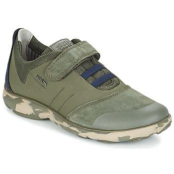 鞋子 儿童 球鞋基本款 Geox 健乐士 J NEBULA B. A 奶油色