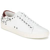 鞋子 女士 球鞋基本款 Ash 艾熙 DAZED 白色