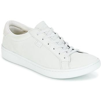 鞋子 女士 球鞋基本款 Keds ACE MONO Glacier / 灰色