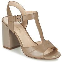 鞋子 女士 凉鞋 Café Noir GIMOTTI 灰褐色