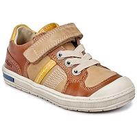 鞋子 男孩 球鞋基本款 Kickers IGORLOW 驼色