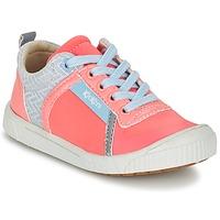 鞋子 女孩 球鞋基本款 Kickers ZIGUY 珊瑚色 / 蓝色