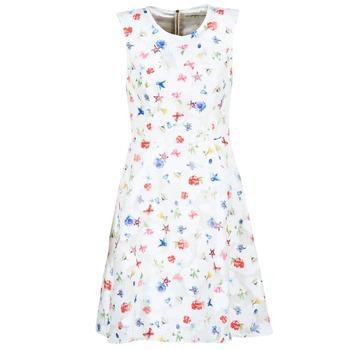 衣服 女士 短裙 Derhy MAESTRIA 白色
