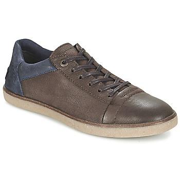 鞋子 男士 球鞋基本款 Kickers CALIC 棕色 / Fonce