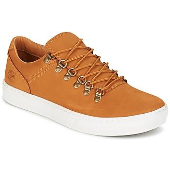 鞋子 男士 球鞋基本款 Timberland 添柏岚 ADV 2.0 CUPSOLE ALPINE OX 棕色