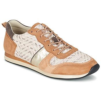 鞋子 女士 球鞋基本款 Bocage LANNY 棕色 / 白色