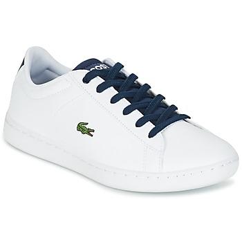 鞋子 儿童 球鞋基本款 Lacoste CARNABY EVO 白色 / 海蓝色