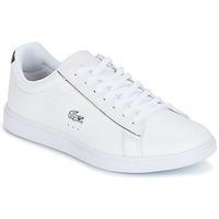 鞋子 女士 球鞋基本款 Lacoste CARNABY EVO 白色