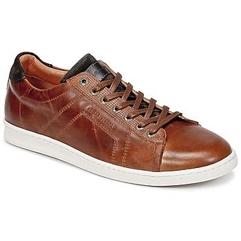 鞋子 男士 球鞋基本款 Redskins ORMIL 棕色