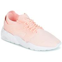鞋子 女士 球鞋基本款 Puma 彪马 Blaze Cage Knit Wn's 玫瑰色