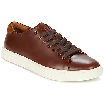 鞋子 男士 球鞋基本款 Ralph Lauren JERMAIN 棕色