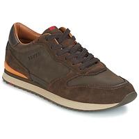 鞋子 男士 球鞋基本款 LLOYD EDWIN 棕色