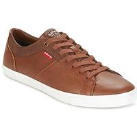 鞋子 男士 球鞋基本款 Levi's 李维斯 WOODS 棕色