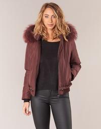 衣服 女士 夾克 Oakwood 62432 波爾多紅