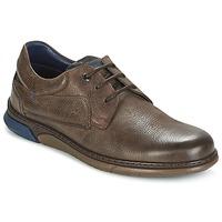 鞋子 男士 球鞋基本款 Fluchos 富乐驰 BEAR 棕色