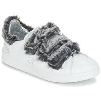 鞋子 女士 球鞋基本款 Ippon Vintage FLIGHT POLAR 白色 / 灰色