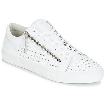 鞋子 男士 球鞋基本款 Jim Rickey ZED STUDS 白色 / 银色