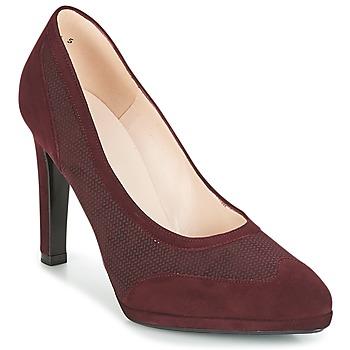 鞋子 女士 高跟鞋 Peter Kaiser HERNA 波尔多红