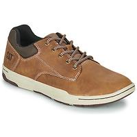 鞋子 男士 球鞋基本款 Caterpillar Colfax 棕色
