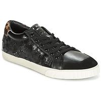 鞋子 女士 球鞋基本款 Ash 艾熙 MAJESTIC 黑色