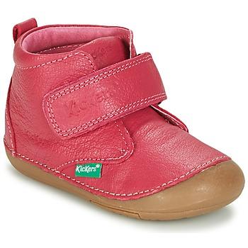 鞋子 女孩 短筒靴 Kickers SABIO 紫红色