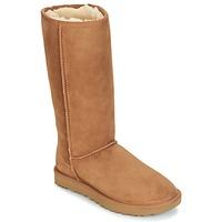 鞋子 女士 短筒靴 UGG CLASSIC TALL II 棕色