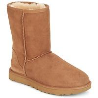 鞋子 女士 短筒靴 UGG CLASSIC SHORT II 棕色