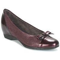 鞋子 女士 平底鞋 Pitillos 3614 波尔多红