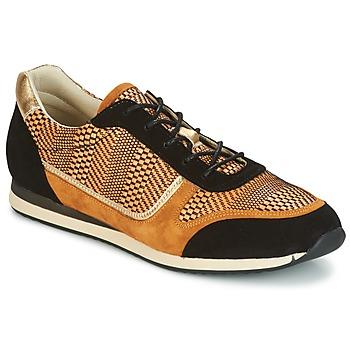 鞋子 女士 球鞋基本款 Bocage LAURETTE 黑色 / 驼色