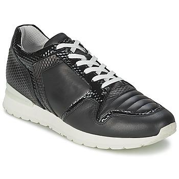 鞋子 女士 球鞋基本款 Bikkembergs KATE 420 黑色